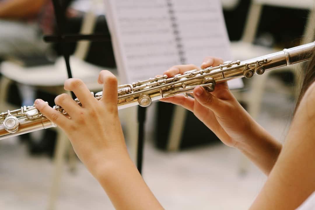 instrumentos de musica de viento