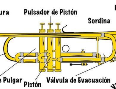 partes de la trompeta