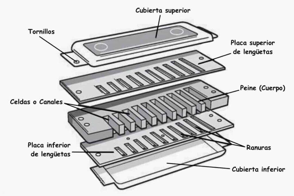 partes de la armónica