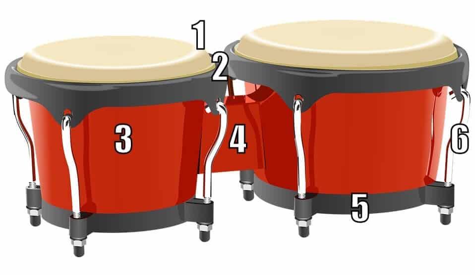 partes de un bongó