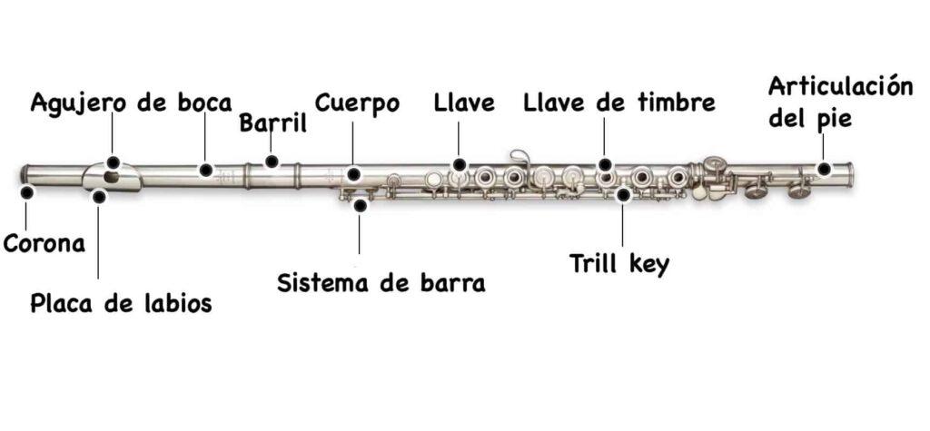 partes de la flauta
